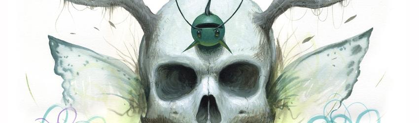 tomC-skullcrack