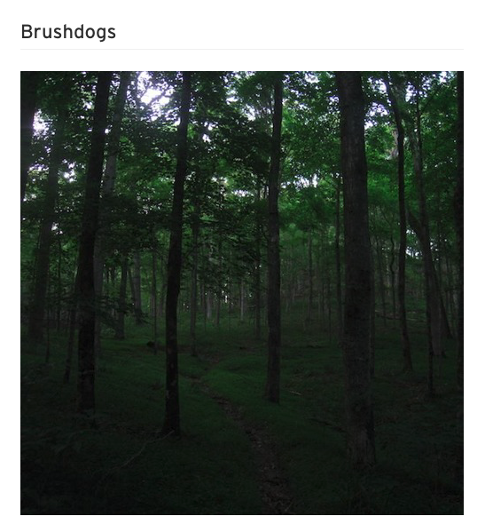 brushdogs
